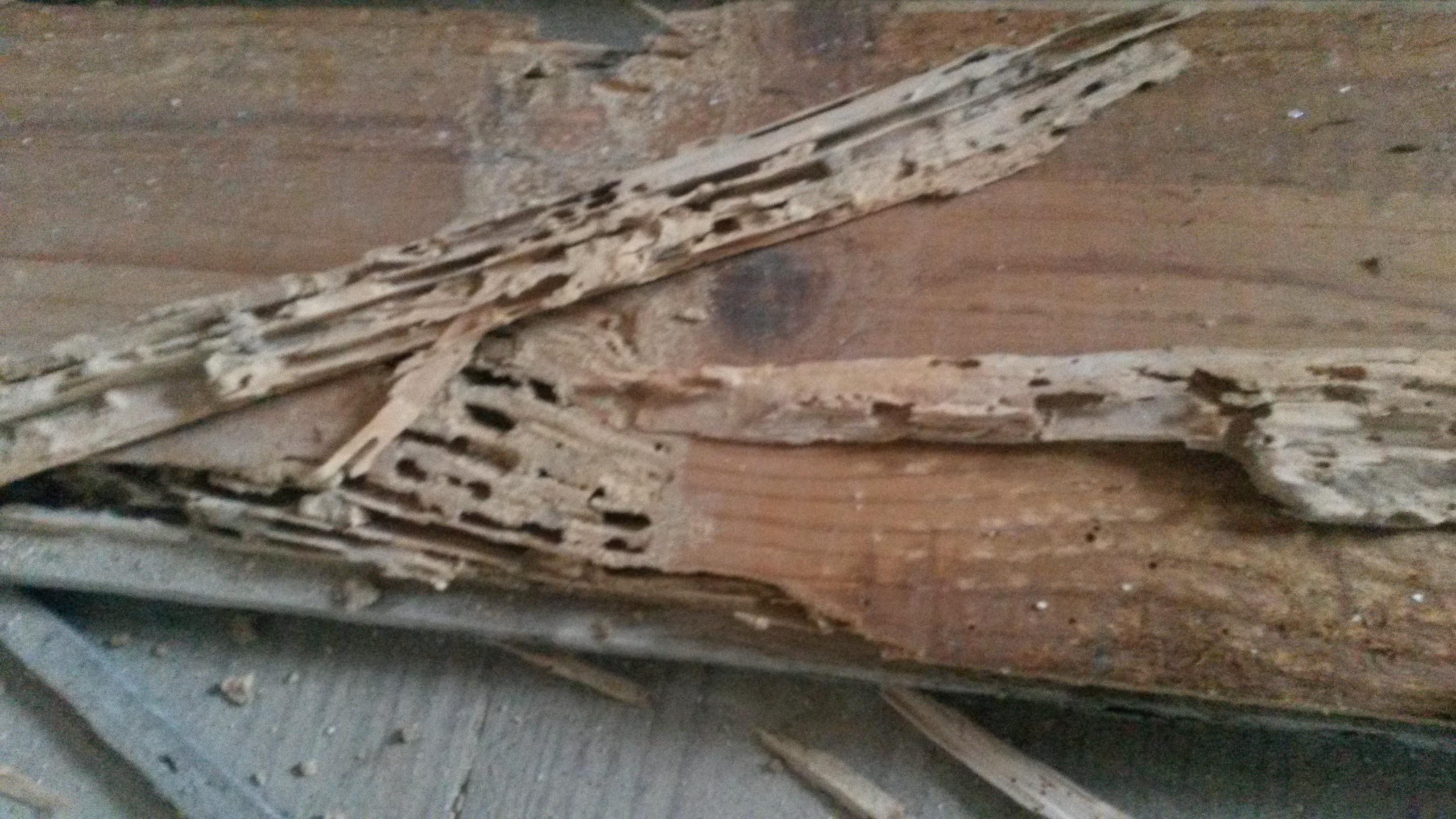 casa-de-madeira-2