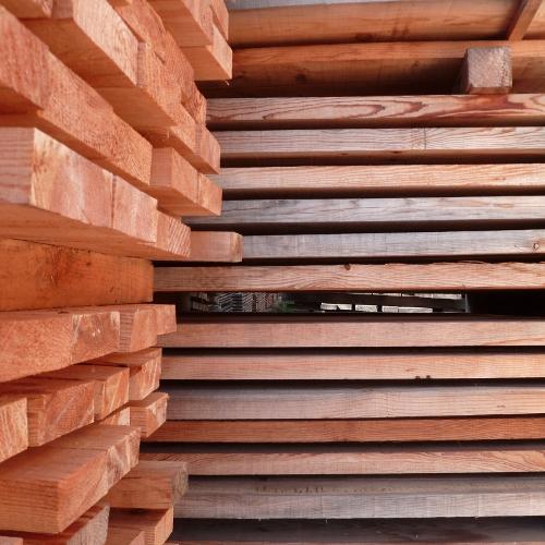 Améliorer la résistance du bois face aux agents biologiques