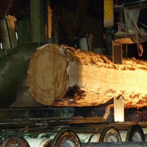 Gros plan sur le sciage du bois en France